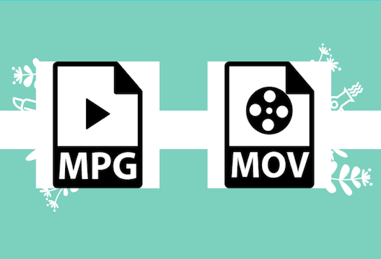 mpg to mov main