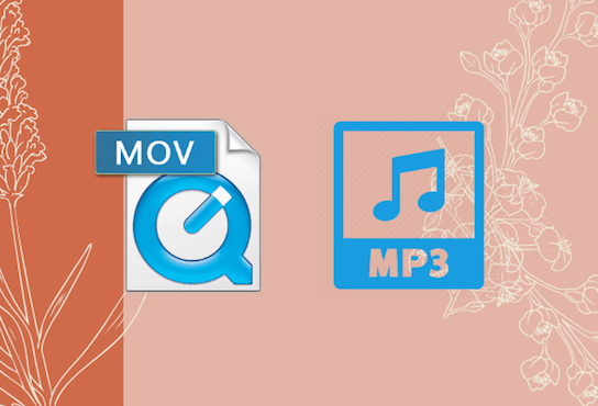 mov to mp3 main